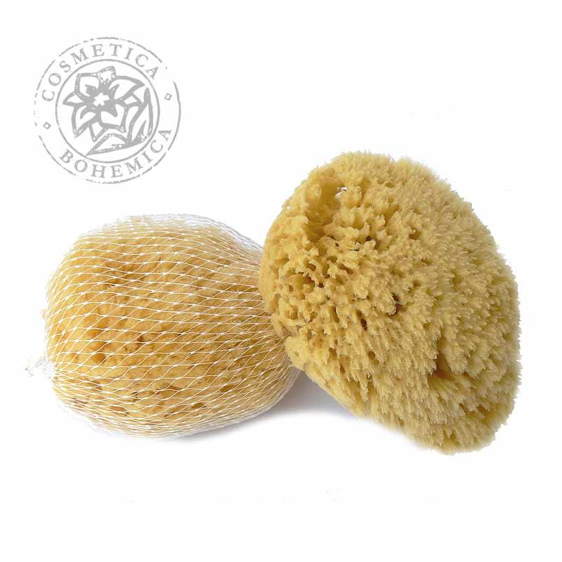 Mycí houba karibská 10-11cm
